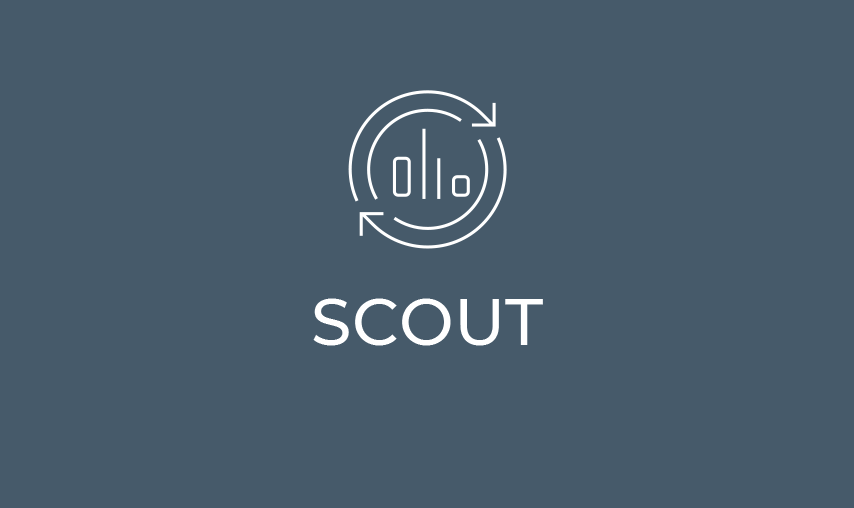 CESE Website 04 Scout