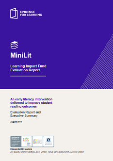 MiniLit evaluation report (PDF opens in new window)